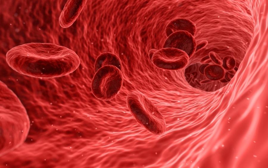 vörösvérsejtek magas vérnyomás esetén