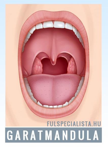 Rekedt hang, köhögés, gombóc a torokban: milyen betegség tünetei lehetnek? - Egészség | Femina