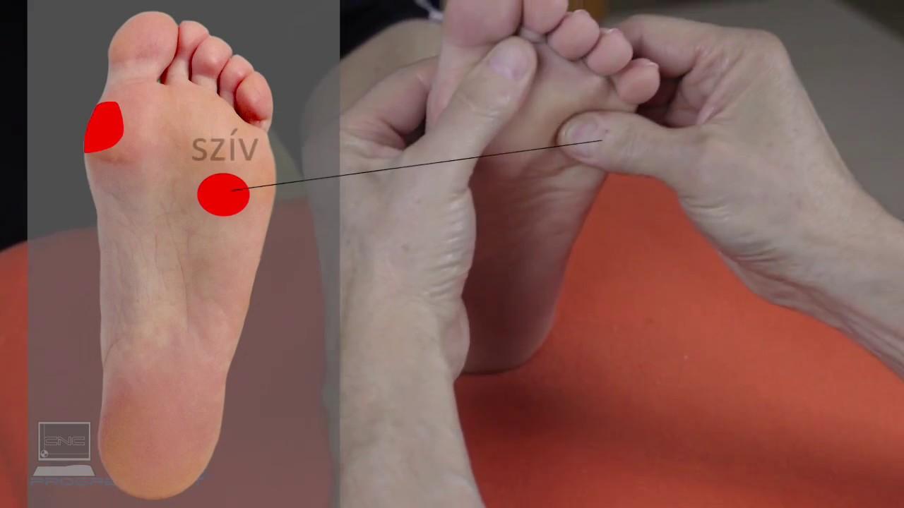 a magas vérnyomás gallérzónájának masszázsa
