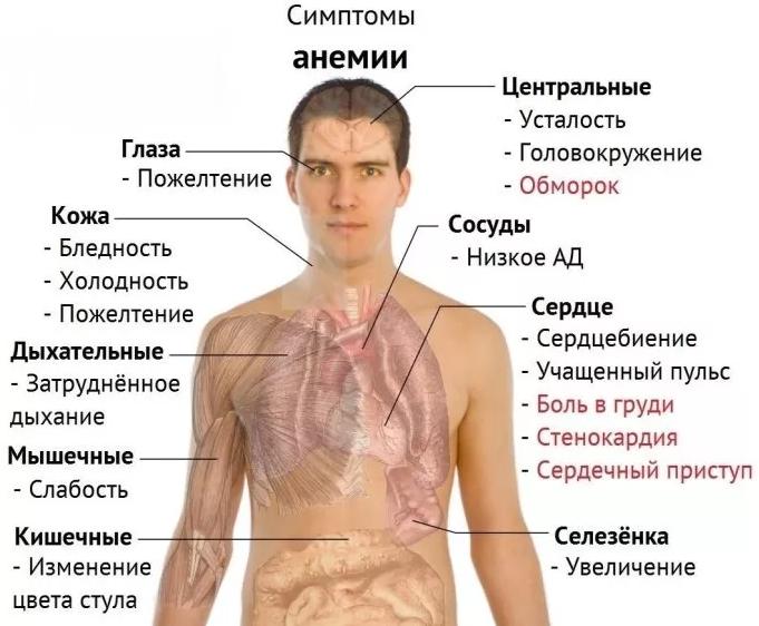 Mit kell tenni magas vérnyomás