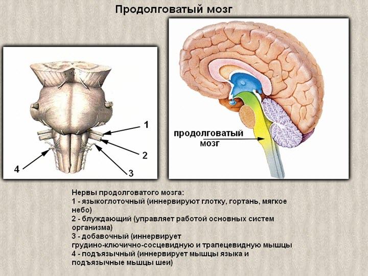 magas vérnyomás osteochondrosisból)