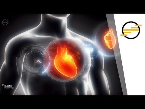 különbség a magas vérnyomás és a magas vérnyomás között milyen ételeket káros enni magas vérnyomás esetén