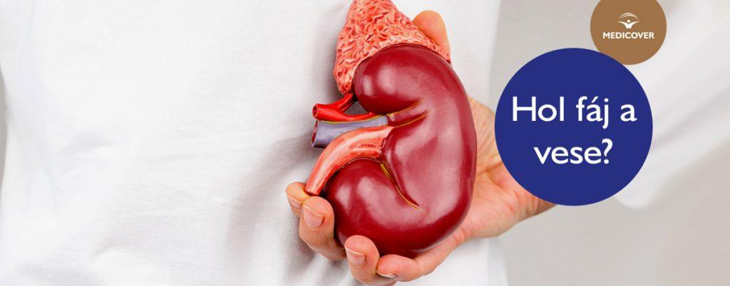magas vérnyomás vese szindrómával)