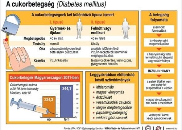 a magas vérnyomás a betegség következő típusára utal)