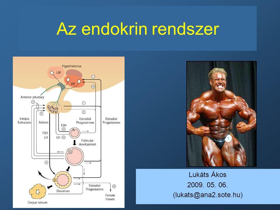 endokrin rendszer és magas vérnyomás)