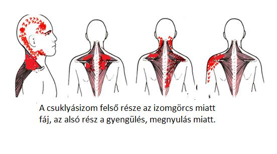 magas vérnyomás esetén a fej csak nagy nyomáson fáj magas vérnyomás 3 fok milyen nyomás