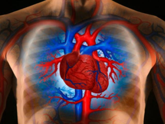Hogyan gyógyítható a szklerózis? - Magas vérnyomás