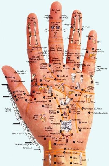 magas vérnyomás bal kéz)