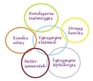hipertóniás életmód magas vérnyomás-kezelési stratégiák