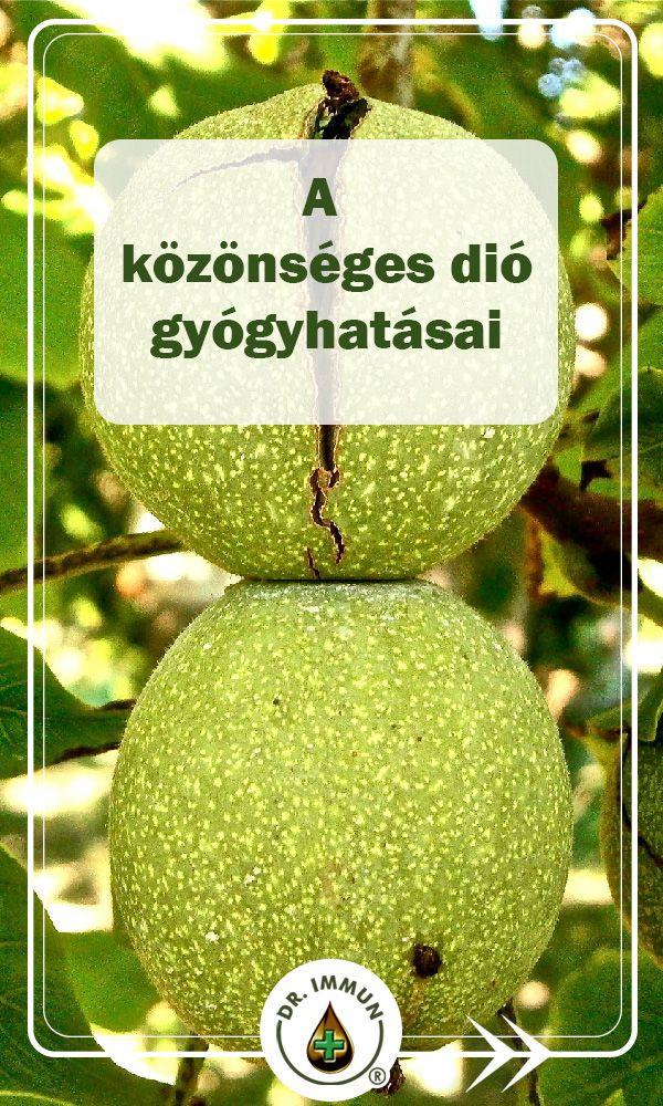 kivi magas vérnyomás ellen)