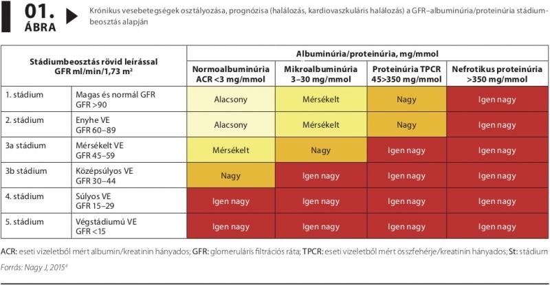 krónikus veseelégtelenséggel járó magas vérnyomás kezelése)