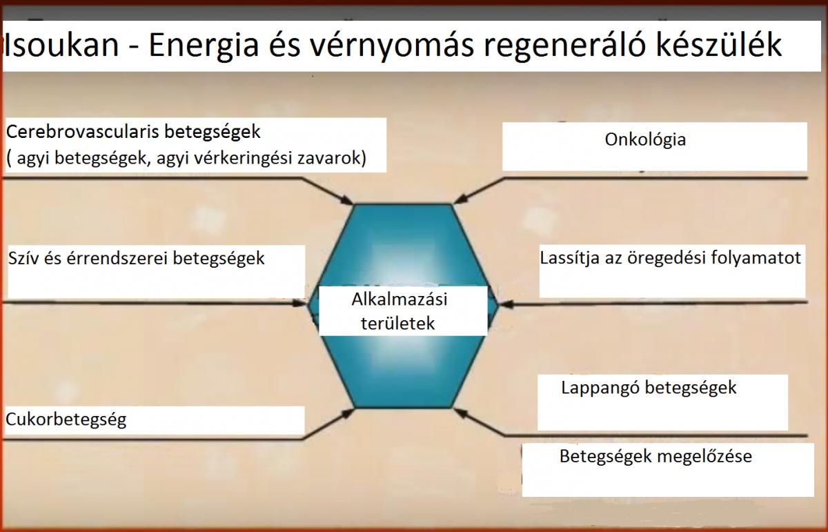 magas vérnyomás bioenergia