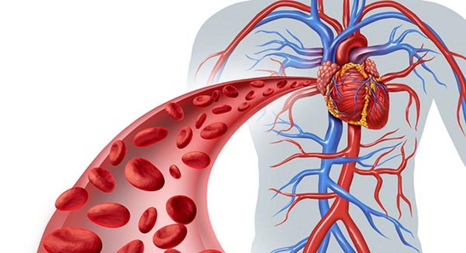 magas vérnyomás lelki okai A bianshi karkötő segít a magas vérnyomásban