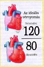 minden testépítőnek magas vérnyomása van