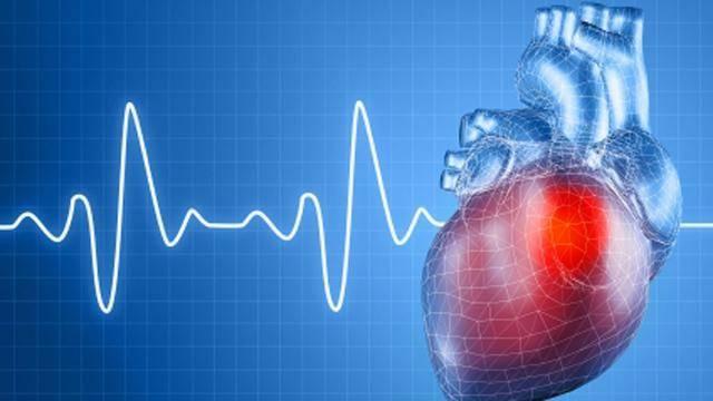 szívméret hipertóniában aki a magas vérnyomás statisztikáját