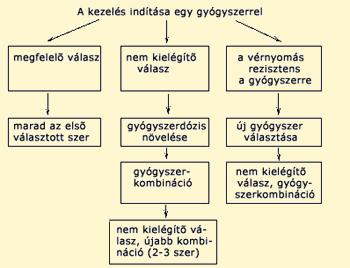 kalcium blokkolók magas vérnyomás elleni gyógyszerekhez)
