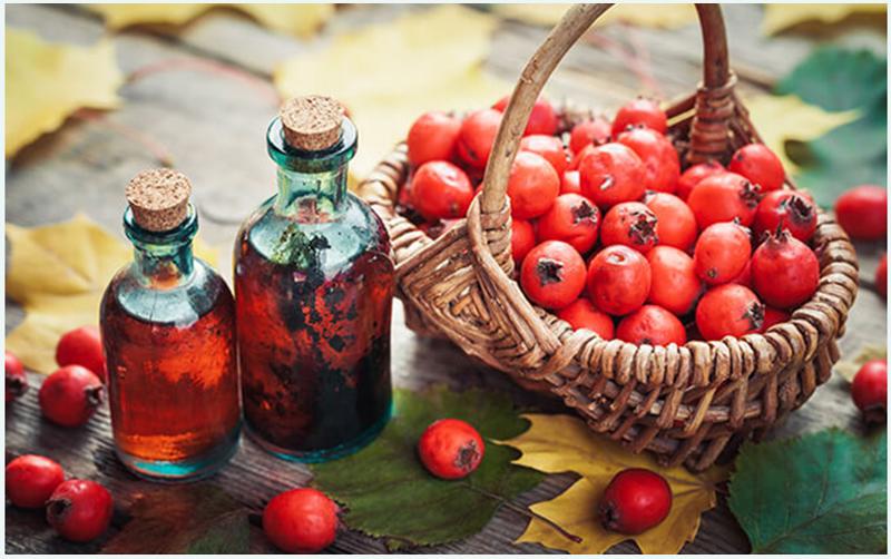 gyógyszeres tinktúrák magas vérnyomás ellen)