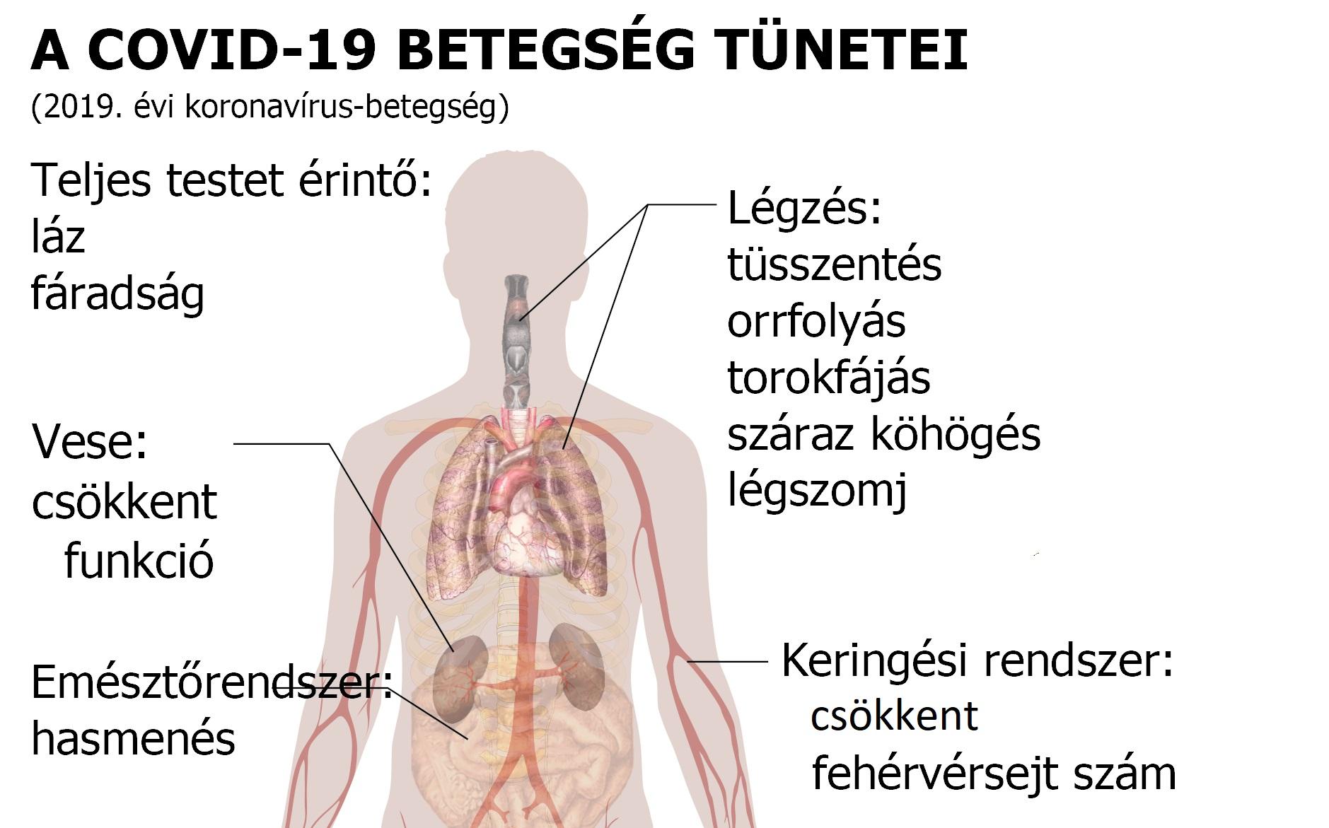 magas vérnyomás és köhögés