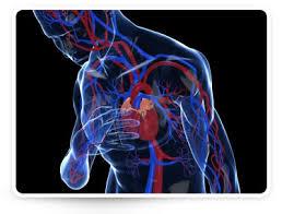 Ezért olyan veszélyes a magas vérnyomás - A magas vérnyomásra utaló jelek - util.hu