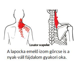 ha hipertónia akkor kezelje a nyakat)